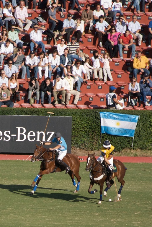 Polo Championship in Argentina