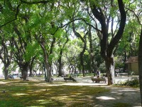 Top Things to Do and See in Mendoza